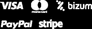 logos visa bizum mastercard paypal teamhost light 1